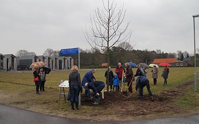 Bomen voor Meister Rongen en Grad Poels